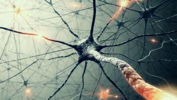 Nöral Terapi Hizmeti